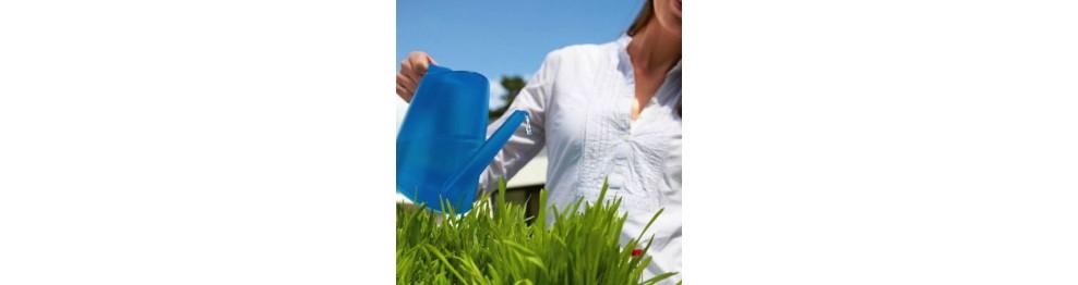 Plantverzorging